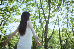森の中でリラックスする若い日本人女性の写真素材 [FYI04917369]