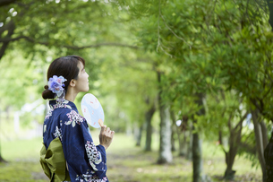 浴衣を着た若い日本人女性の写真素材 [FYI04917476]