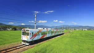 八木沢の田園とれいんどりーむ号と鳥のペアの写真素材 [FYI04918526]