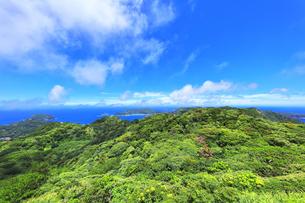 小笠原国立公園 父島の中央山から北方向を望むの写真素材 [FYI04918983]