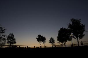 夕暮れの公園の写真素材 [FYI04919049]