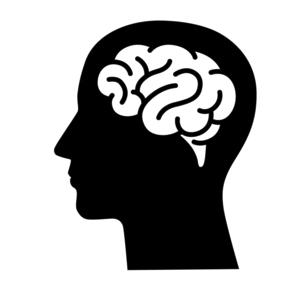 脳みそと人の頭のアイコンのイラスト素材 [FYI04919506]