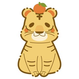 かわいい虎の年賀状素材 2022年 年賀状 寅年のイラスト素材 [FYI04919514]