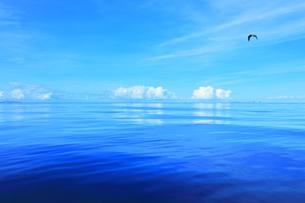 小笠原諸島 穏やかな太平洋に聟島列島の媒島と嫁島の写真素材 [FYI04919573]