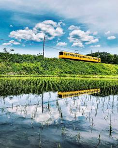 三岐鉄道の田んぼリフレクションの写真素材 [FYI04919765]