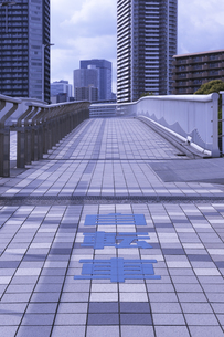 辰巳桜橋の自転車通行区分帯の写真素材 [FYI04919885]