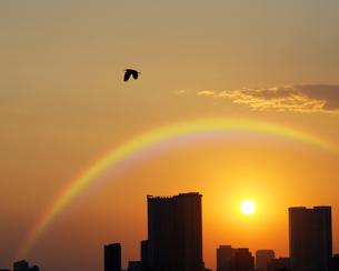 お台場海浜公園から見る夕日と虹の写真素材 [FYI04919905]