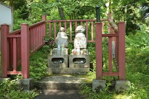 金鶏山 義経妻子の墓の写真素材 [FYI04920248]