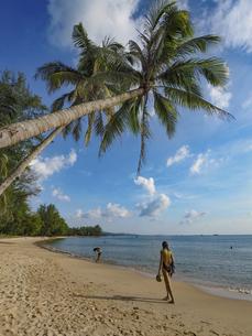 フーコック島ココパームビーチの写真素材 [FYI04920338]