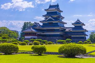 堂々と聳える松本城の写真素材 [FYI04920459]