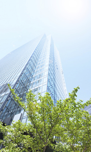 高層ビルと光の写真素材 [FYI04920595]