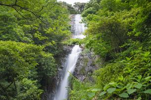 甑島 瀬尾の観音三滝の写真素材 [FYI04920894]