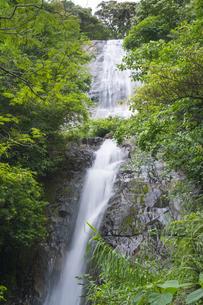 甑島 瀬尾の観音三滝の写真素材 [FYI04920895]