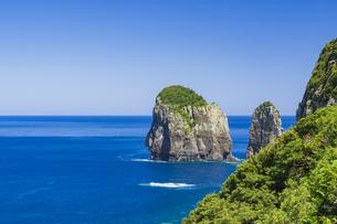 甑島 ナポレオン岩の写真素材 [FYI04920918]
