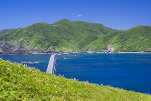 甑島 鳥の巣山展望所からの眺望の写真素材 [FYI04920925]