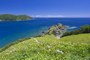 甑島 鳥の巣山展望所からの眺望の写真素材 [FYI04920926]