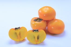 こおげ花御所柿の写真素材 [FYI04920957]