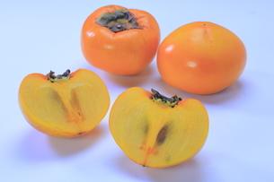 こおげ花御所柿の写真素材 [FYI04920961]