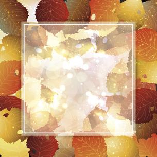 枯れ葉のイラストフレーム背景のイラスト素材 [FYI04920972]