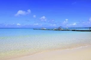 沖縄・宮古島 前浜ビーチの写真素材 [FYI04921524]