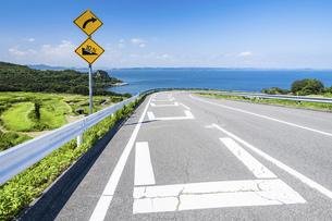 【香川県 豊島】海が見える坂道の風景 旅の写真素材 [FYI04921536]