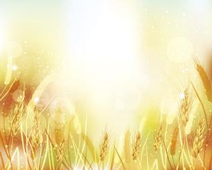 麦のイラストとグラデーション背景のイラスト素材 [FYI04921583]