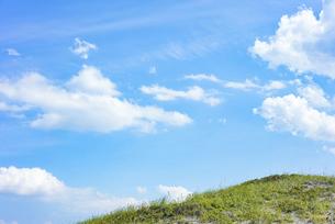 草原と青空の写真素材 [FYI04921607]