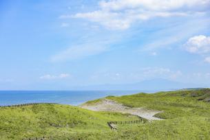 海沿いの草原と晴れた夏の空の写真素材 [FYI04921613]