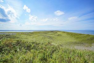 海沿いの草原と晴れた夏の空の写真素材 [FYI04921615]