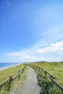 海沿いの草原と晴れた夏の空の写真素材 [FYI04921617]