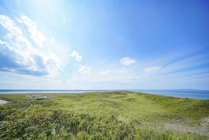 海沿いの草原と晴れた夏の空の写真素材 [FYI04921619]