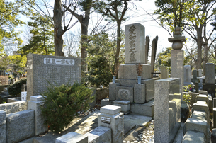愛知揆一墓所・雑司ケ谷霊園の写真素材 [FYI04921768]