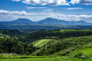 熊本県 ヒゴタイ公園より阿蘇山を望むの写真素材 [FYI04921817]