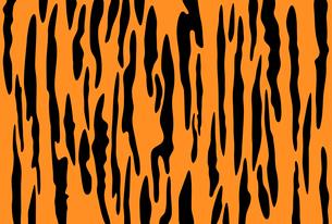 オレンジ色と黒の虎柄の模様【横位置のはがきテンプレート】のイラスト素材 [FYI04921930]