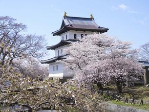 松前城の桜の写真素材 [FYI04922490]