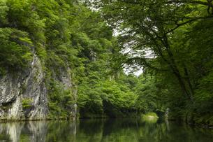 岩手 猊鼻渓の写真素材 [FYI04922971]