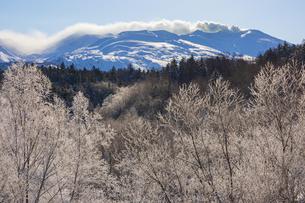 噴煙を上げる十勝岳と朝日に輝く霧氷の写真素材 [FYI04923548]