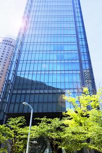 高層ビルと光と新緑の写真素材 [FYI04923579]