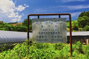 旧国鉄倉吉線 泰久寺駅跡(廃線跡)の写真素材 [FYI04923658]
