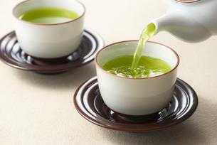 お茶を注ぐの写真素材 [FYI04923980]