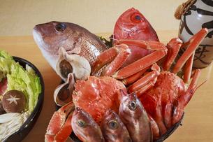 海鮮食材の写真素材 [FYI04924339]