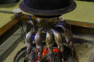囲炉裏で焼く川魚の写真素材 [FYI04924377]