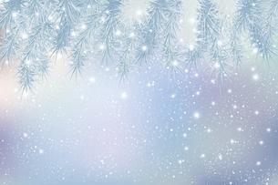 モミと雪のクリスマス背景のイラスト素材 [FYI04924620]