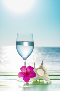 海をバックにグラスと貝とプルメリアの写真素材 [FYI04924622]