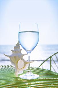 海をバックにグラスと貝とプルメリアの写真素材 [FYI04924627]