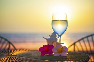 海をバックにグラスと貝とプルメリアの写真素材 [FYI04924647]