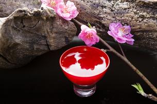 日本酒と桃の花の写真素材 [FYI04924681]