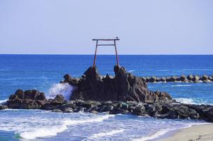 晴れ渡った日本海、海の中の赤い鳥居さん(旧羽合町のハワイ海水浴場) の写真素材 [FYI04924777]