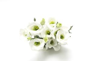 トルコキキョウの花束の写真素材 [FYI04924857]