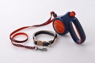 犬用のリードと首輪の写真素材 [FYI04925066]